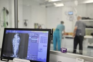Radiography interpretation for Nurses