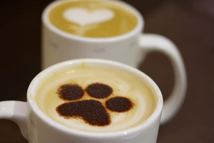 Coffee with Our Clincians  | Head trauma