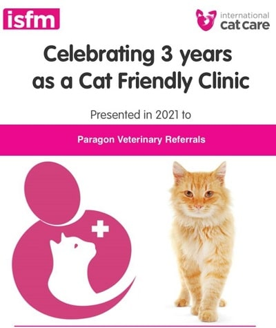 Cat Clinic web feature image